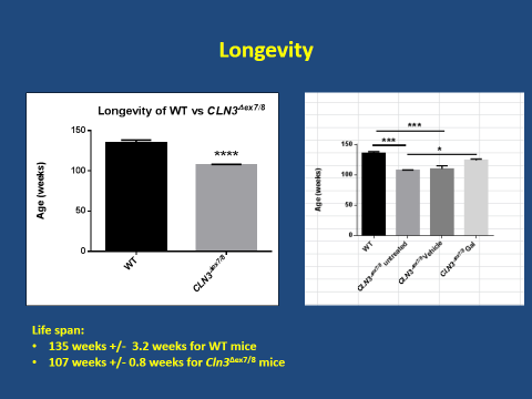 Improved longevity in CLN3 mice treated with GalCer